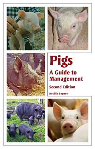 Pigs: A Guide to Management, Second Edition
