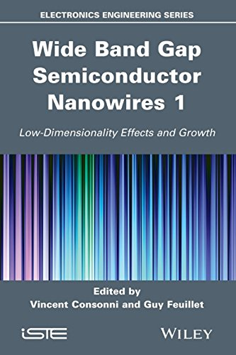 Wide Band Gap Semiconductor Nanowires for Optical Devices: Low-Dimensionality Related Effects and Growth