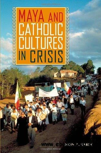 understanding culture society and politics book pdf
