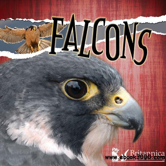 Falcons (Raptors (Discovery))