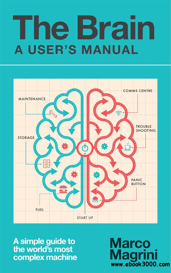 Picture Of Human Brain Manual Guide