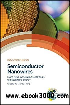 Semiconductor Nanowires: From Next-Generation Electronics to Sustainable Energy